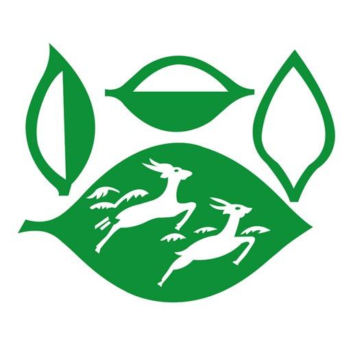 doghazal-tea-logo